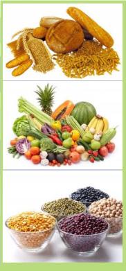 Dieta-Macrobiotica-13-Dias-6