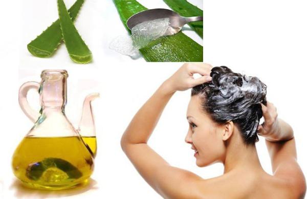 La máscara para los cabellos el huevo el aceite de bardana el aceite de ricino la miel