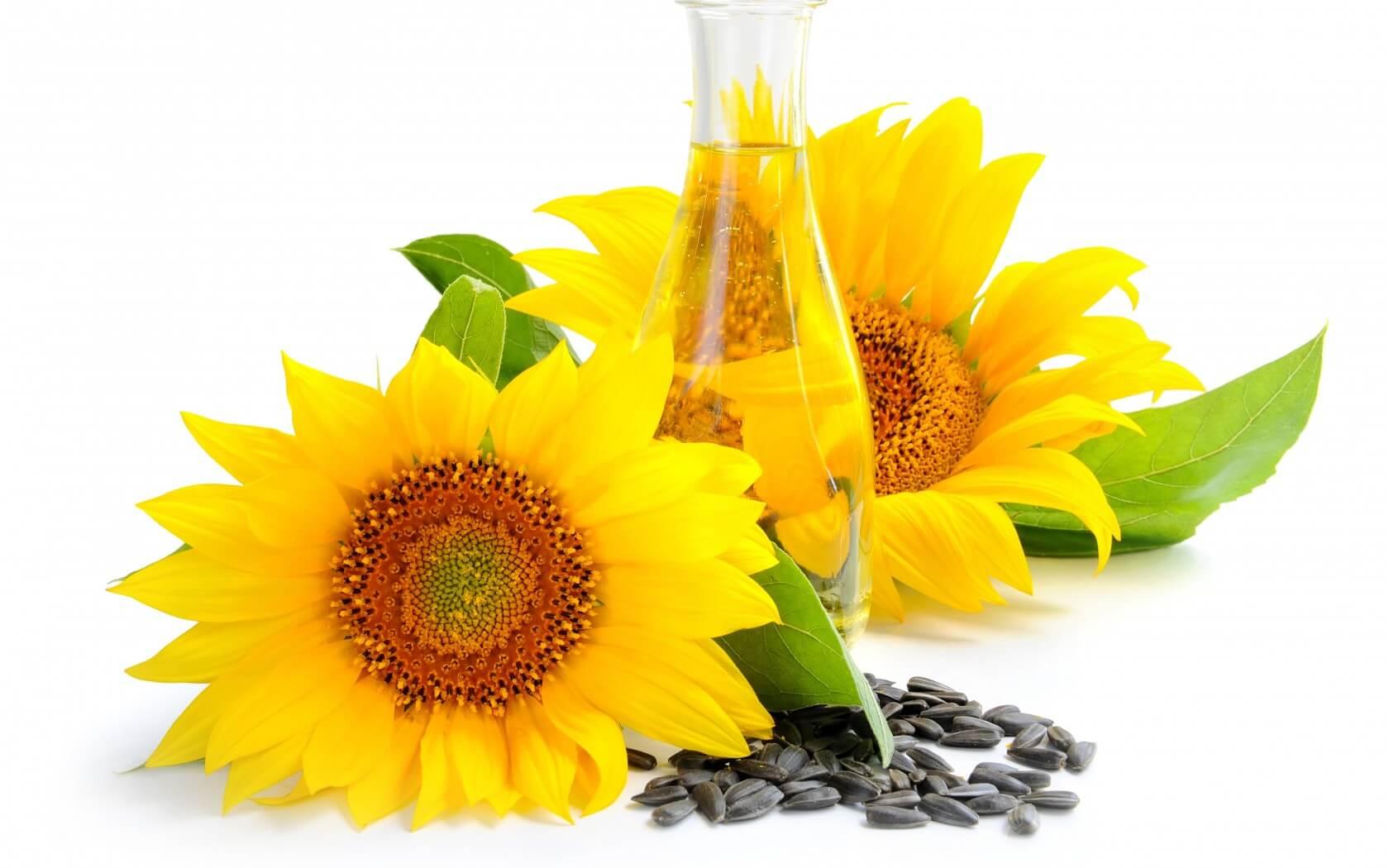 Que vitaminas son mejor beber contra la caída de los cabello