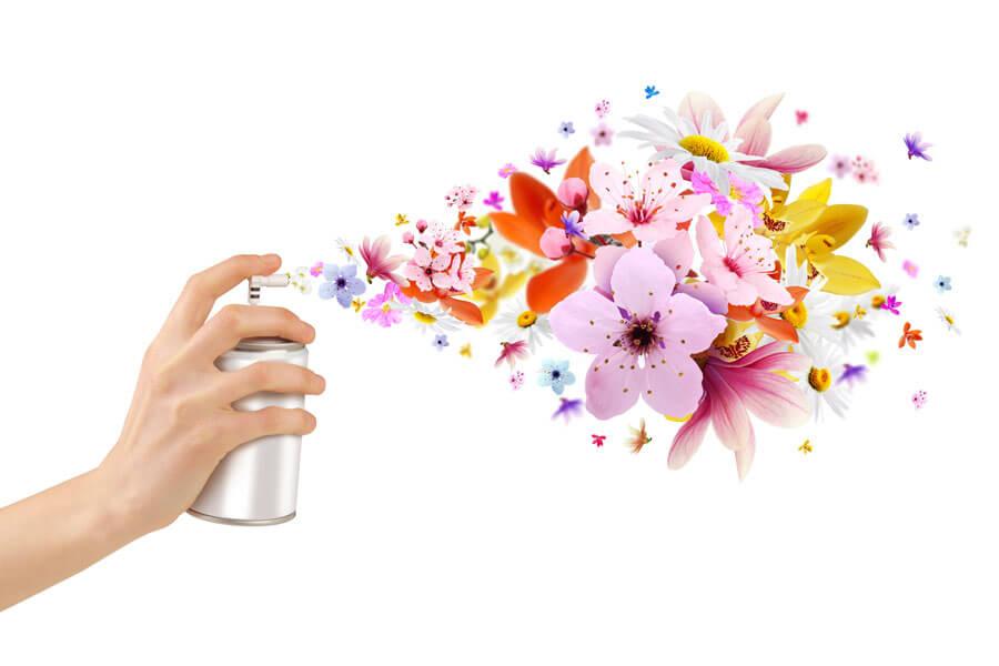 Di adi s a los malos olores en casa decoraci n - Malos olores en casa ...