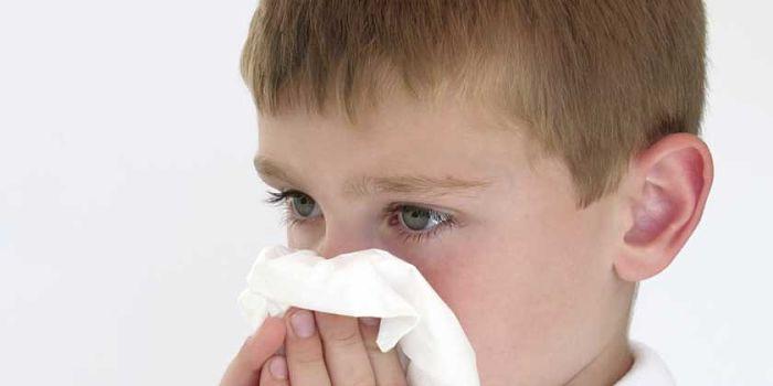 remedios caseros para la rinitis