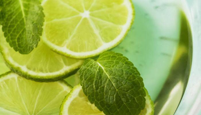 limon y menta para las lombrices