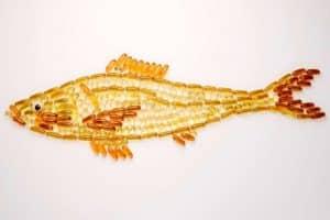 los aceites de pescado como remedios naturales para la osteoporosis