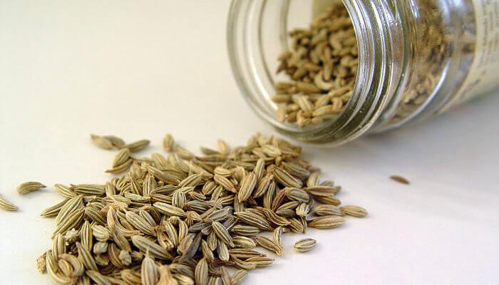 semillas de hinojo para la conjuntivitis
