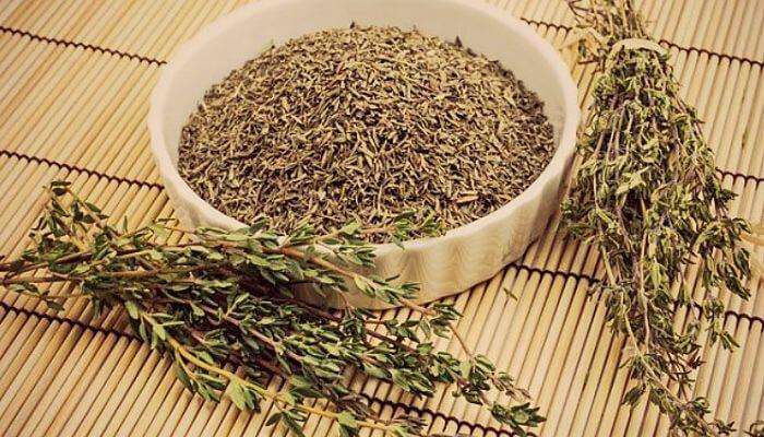 tomillo, planta medicinal