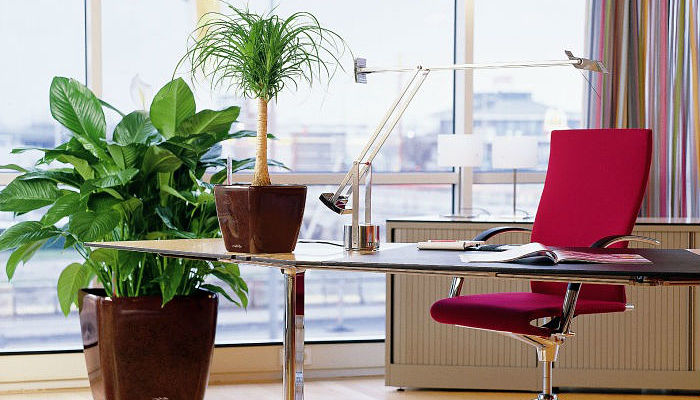 6 consejos para decorar oficina seg n feng shui fabulosos for Como remodelar una oficina