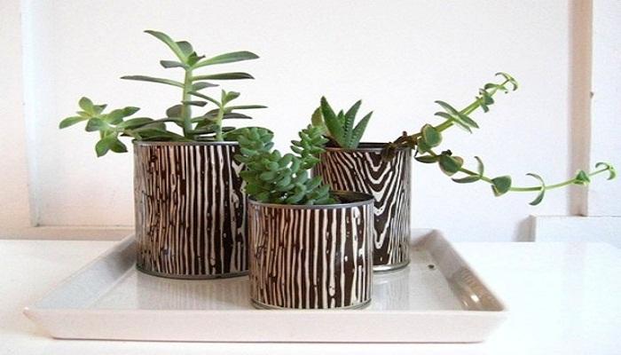 puedes usarlas para plantar tus flores favoritas
