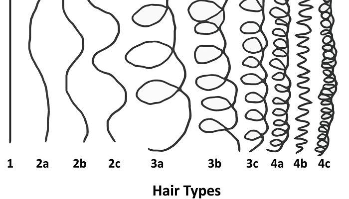 tipos de pelos