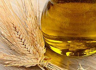contraindicaciones del aceite de germen de trigo