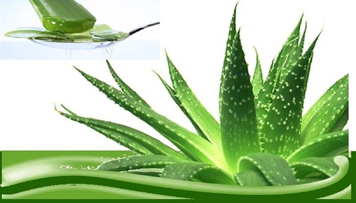 curativas del cuerpo y las energías